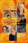 Best Exotic Marigold Hotel Review