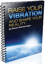 Raise Your Vibration by Kevin Schoeninger